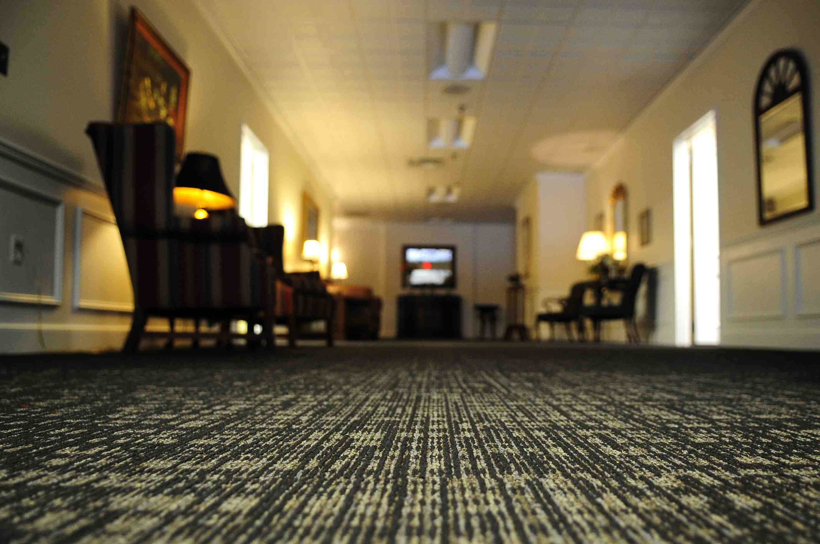 commercial janitorial services - Steam Extraction Carpet Cleaning Service
